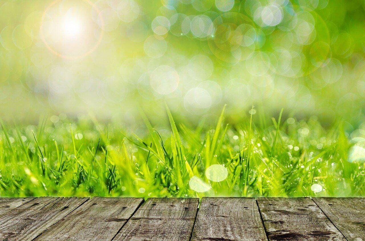 faire une terrasse pas chère sur pelouse
